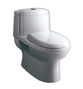 One Piece Dual Flush Toilet TB222
