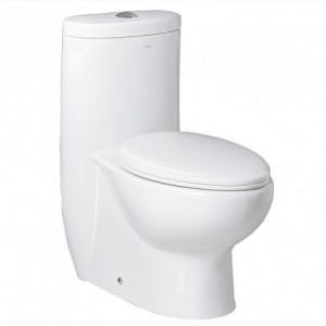 One Piece Dual Flush Toilet TB309