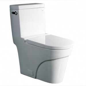 One Piece Single Flush Toilet TB326