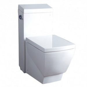 One Piece Single FlushToilet TB336