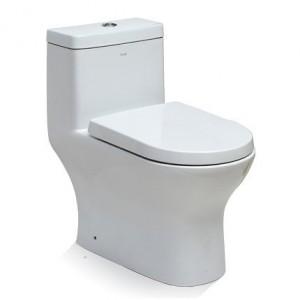 One Piece Dual Flush Toilet TB353