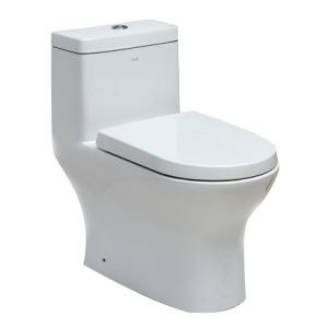 One Piece Dual Flush Toilet TB353