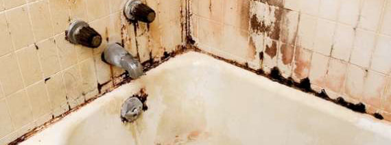 making bathrooms safe against mold and mildew