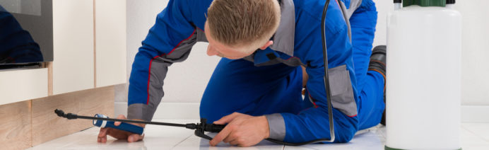 Kamloops pest control services